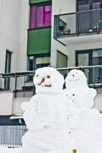 sniego-seniai-2450