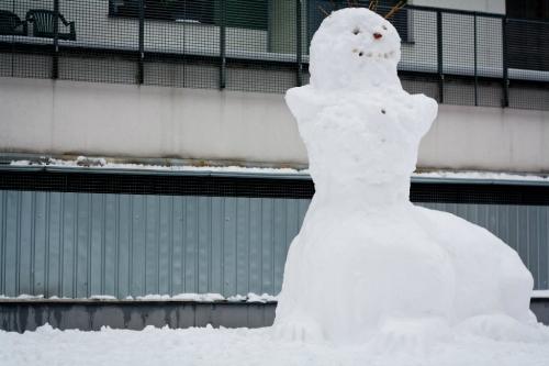 sniego-seniai-2462