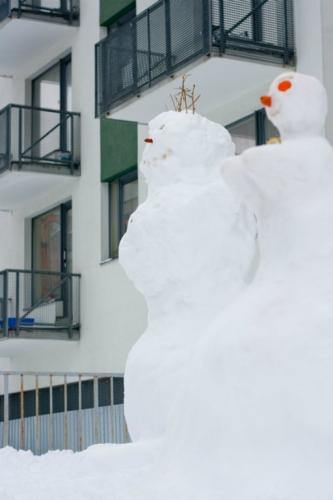 sniego-seniai-2476